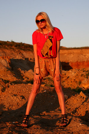 Wildfox shorts - Wildfox t-shirt
