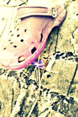 purple Croc clogs