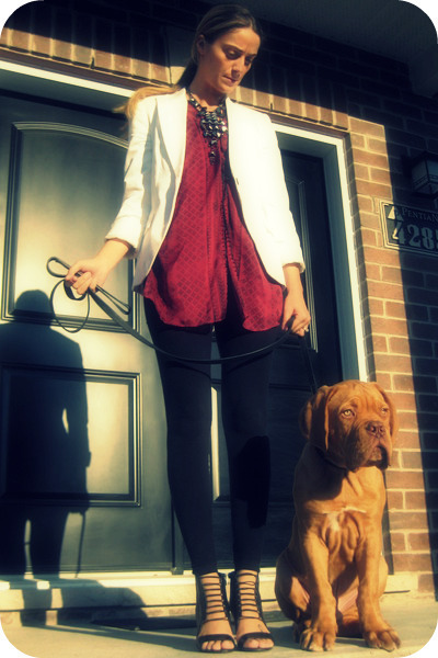 Zara blazer - Arden B blouse - H&amp;M leggings - Aldo shoes - Ardene necklace