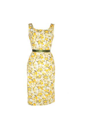 Styleiconscloset dress